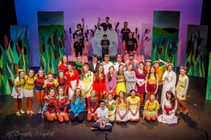 'HONK' The Musical